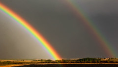The Amazing Double Rainbow photo by LostMyHeadache: Absolutely Free *