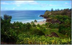 Allerton Garden, Kauai photo by tdlucas5000