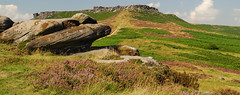 Higger tor and heather photo by CLIFFWALKER