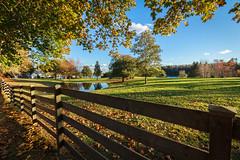 Beyond The Fence photo by bluegreenorange