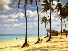 Caribbean beach series ..  Cuba photo by Nick Kenrick..
