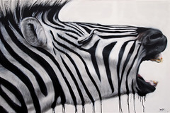 Zebraaaa photo by 'gnasher'