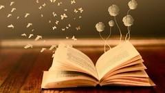 livre ouvert3