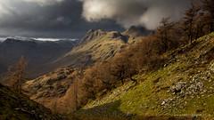 An afternoon on Lingmoor Fell II photo by Sam Pilgrim
