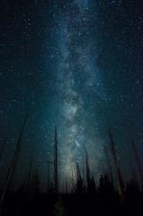 Night Fire photo by ZacharyHayes