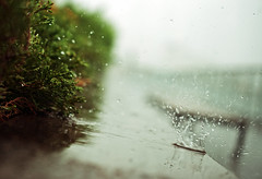 Rain photo by Hamid.A