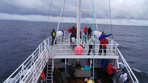 2013-0721 821 Andenes terugreis walvisafari