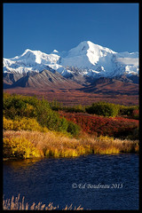 Denali Autumn photo by Ed Boudreau