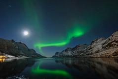 Weak aurora borealis photo by TerjeLM