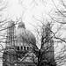 #basílicadelsagradocorazón #basílicadekoekelberg #2016 #bruselas #bruxelles #brussel #bélgica #belgium #ciudad #city #viajar #travel #viaje #trip #paisaje #landscape #árboles #trees #blancoynegro #blackandwhite #photography #photographer #picoftheday #son