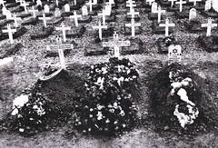 Brosset- 1944- première sépulture à Villersexel