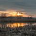 ayou of river Don, Malyshevo, Voronezh, Russia