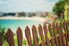 Happy Beach Fence Friday photo by jennydasdesign