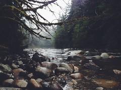 Seymour River #47484849 photo by Orbittrap
