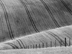 Downland fence photo by Alan Frost Photography