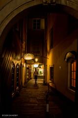 Shadow Walkway photo by Oleh Zavadsky