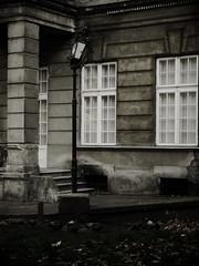 lantern photo by Darek Drapala