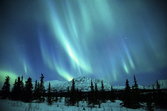 Northern Lights Over the Alaska Range photo by Critter Seeker