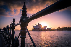 Opera House Sunrise photo by Rod Gotfried Photography