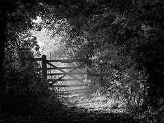 The Gate photo by Alan Frost Photography