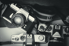 Pentax Spotmatic + Super Takumar 50mm f2 photo by A Vahanvaty