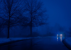Foggy Evening photo by ratulm