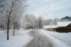 Snowy landscape near Linderhof, Bavaria Germany (15 December 2013) photo by Mac Qin