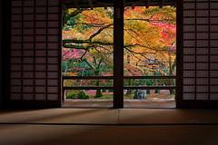 Borrowed Scenery / 借景 photo by Mitsu-chan