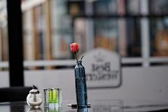 850F0293 - A flower in Hotel De Jonge photo by Zoemies...
