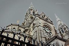 Saint Finbarr's Cathedral photo by dorameulman