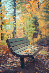 Impasto in Autumn photo by Thousand Word Images by Dustin Abbott