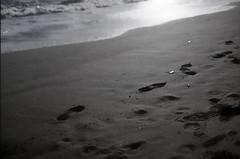 shore photo by nag #12