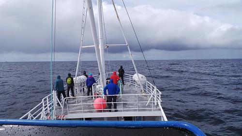 2013-0721 785 Andenes Walvissafariboot