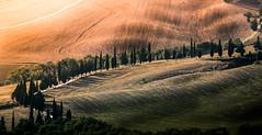 A sunset in Tuscany photo by Massimiliano Teodori