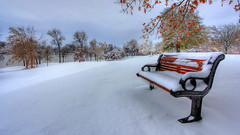 snowy bench photo by Dave's Photo Odyssey
