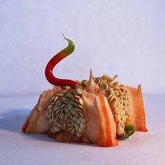 Green Tipped Pepper Snake photo by Matt Molloy