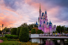 Magic Kingdom - Beauty photo by Cory Disbrow