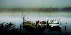 misty river photo by trevis_lu