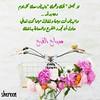 33262630141_4ab560b6ef_t