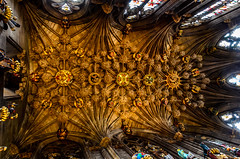 Thistle Chapel Ceiling - Explored, thank you photo by Lorrainec55