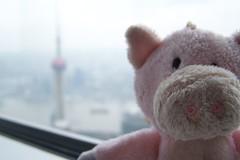 Chu-chu @ Shanghai