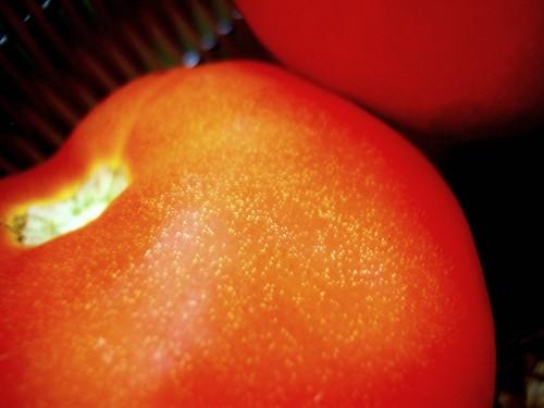 sparkling tomato