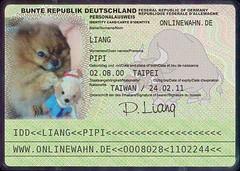 PIPI's passport