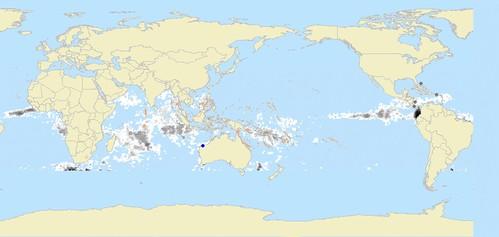 Esbranquiçamento de corais 2005