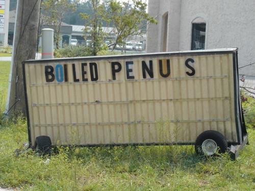 Boiled Penus