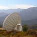 Malibu Antenna (1)