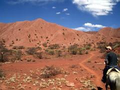 Horseback - 15 - Eddy trail