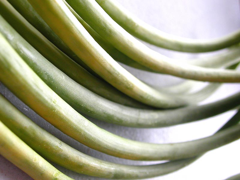 garlic scapes 2
