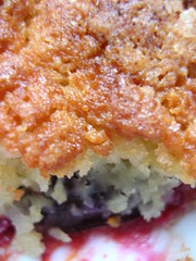 plum crumble (close-up)