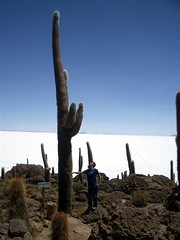 Salar Trip - 49 - Matt 12m cactus 1200 years old